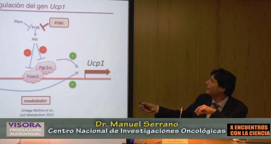 """Vídeo de la conferencia """"Obesidad y Cancer"""""""