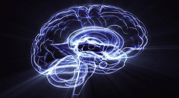 """Conferencia en Málaga """"Evolución de la mente: de la mente animal a la mente humana"""""""