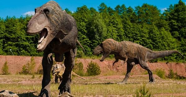 dinosaurs-958017_640