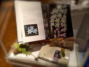 Vitrina de Botánica